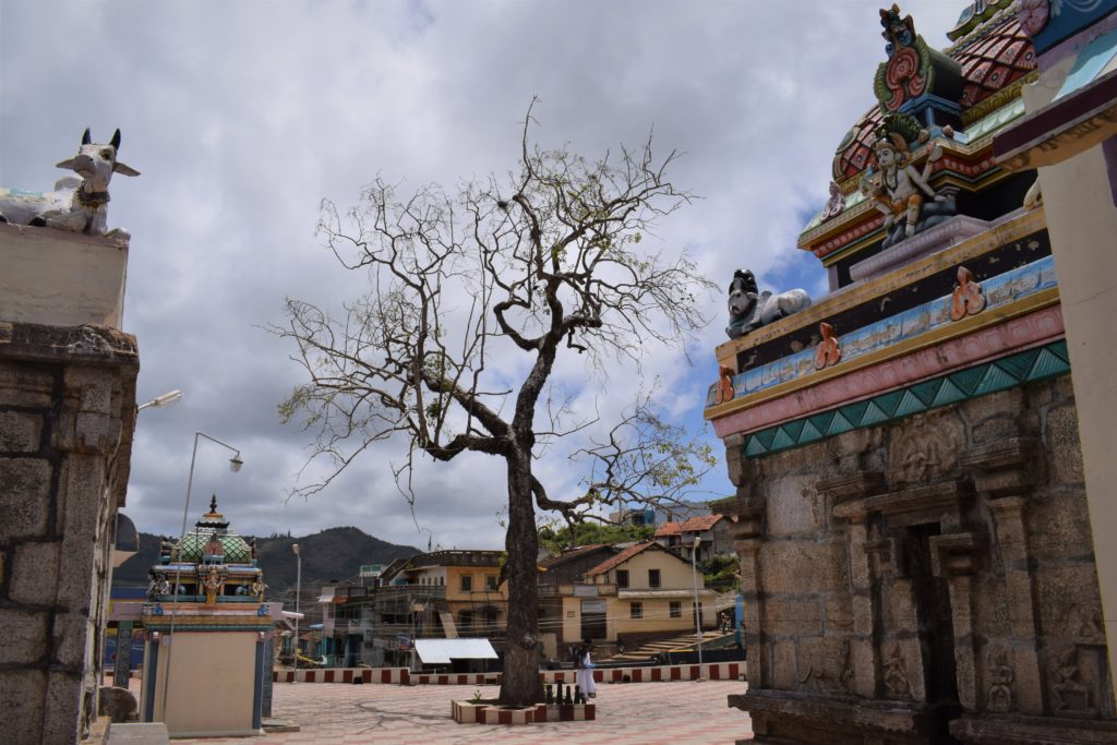 Poombarai Murugan Temple